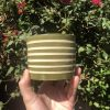 green white planter